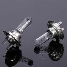 Fashion Lamp Light Car H7 12V 55W 4300k White Fog Halogen Bulb
