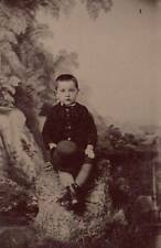 Vintage 6th plate tintype handsome young boy on rock with hat painted backdrop