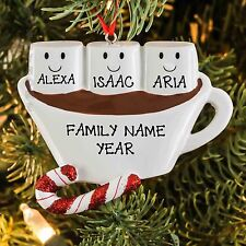 Hot Chocolate With Marshmallow Family of 3 Personalized Christmas Thee Ornament