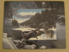 WOLF collector plate / plaque EDGE OF THE WILD Kevin Daniel WOLVES New Frontiers