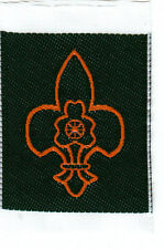 Boy Scout Badge MEMBERSHIP India