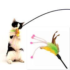 Neu komisch Katze Katzen Kätzchen Haustier Feder Korn spielen Spiel Spielzeug