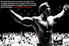 Arnold Schwarzenegger Bodybuilding Motivational Poster 24x36'' Gym Decoration13