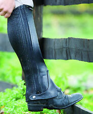 Shires Leather Half Chaps-Black-L