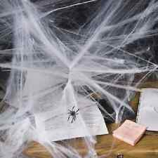 Stretchable Spiderweb Halloween Decoration (25/110)