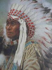Completed Needle Treasures Colorart Crewel BUFFALO CALLER Indian Chief 16X20 NEW