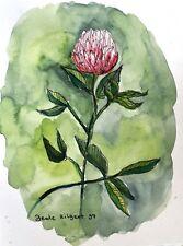 """Aquarell Original """"Kleeblüte"""" Botanik Pflanze Kunstwerk ca. 18x24cm"""