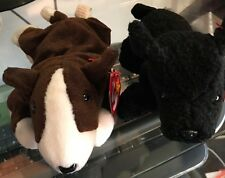 2 Ty Beanie Babies Bruno the Pit Bull Terrier Scottie the Scotty Dog Baby Plush