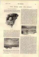 1893 Idle Days In Patagonia From The Channel Islands