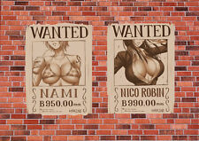 POSTER A4 PLASTIFIE-LAMINATED(1 FREE/1 GRATUIT)*MANGA ONE PIECE.WANTED NAMIROBIN