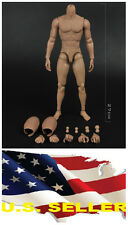 ❶❶1/6 MUSCULAR FIGURE BODY Narrow Shoulder Hot Toys TTM19 Hitfigure US seller❶❶