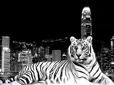 """BEAUTIFUL FRAMED CANVAS PICTURE PRINT TIGER AND CITY A1 30"""" x 20"""" inch"""