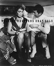 DEAN MARTIN leggy MATT HELM Photo THE SILENCERS Sexy STELLA STEVENS Nylons BUSTY