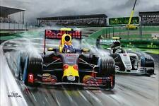 Painting Max Verstappen: Rain King Brazilian Grand Prix 2016 by Toon Nagtegaal