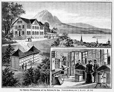 Bienenmuseum in Rosenberg bei Zug, Schweiz, Imker, Original-Holzstich von 1894