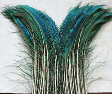 New 50Pcs/lot Sword Peacock Feather (right and left) 8-12Inches Y0099