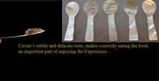 5 pieces 8cm handmade coloured MOTHER OF PEARL spoon SALT MUSTARD CAVIAR herb