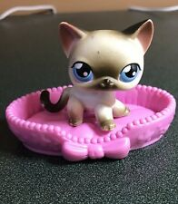 Littlest Pet Shop 5 Siamese Standing Cat Black White Blue Eyes & Accessory