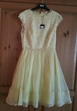 BNWT TED BAKER YELLOW LADIES DRESS SIZE 2 UK10 RRP £299
