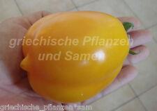 RUSSISCHE LIME Limone Tomate 10 Semi vecchio Tipi MOLTO RARO Semi di pomodoro