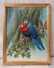 "Oil Painting on Canvas ""Parrots on Tree Branch"" w. Gold Antique Wood Frame 14x18"