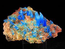 """3.25"""" Natural Blue Chalcanthite on Matrix, Planet Mine, Arizona! CHA379"""
