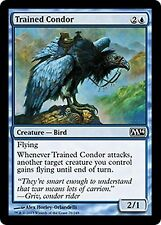 Trained Condor     x4  EX/NM CHINESE M14  MTG Magic  Blue  Common