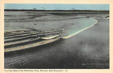 B5121 The Tidal of the Petitcodiac River Moncton N B