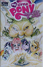 My Little Pony 16 Variant Cover B IDW Publishing Heather Nuhfer Amy Mebberson