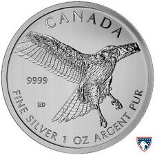 2015 1 oz Canadian Silver Red-Tailed Hawk Coin (BU) - SKU 0120