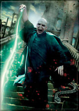 Harry Potter Photo Quality Magnet: Lord Voldemort
