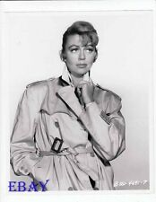 Dorothy Malone sexy in trenchcoat VINTAGE Photo circa 1953