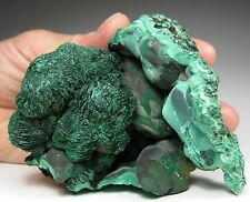 Fine Malachite after AZURITE crystals on Malachite * Sebra * Bahia * Brazil