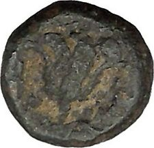 Rhodes, Islands off Caria 394BC RARE Ancient Greek Coin Nymph Rose   i45703