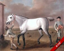 VICTORIOUS THE GREY RACE HORSE AT NEWMARKET OIL PAINTING ART REAL CANVAS PRINT