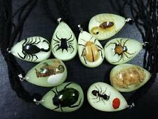 9 pcs real scorpion ant crab spider beetle insect erogenous glow style pendant