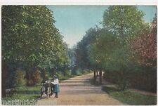 Warren Road Purley, Surrey Postcard, B456