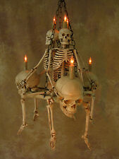 Skeleton Chandelier, Halloween Prop, Human Skeletons