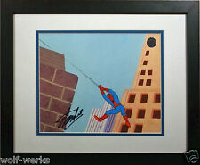 STAN LEE Spider-man 1967 Hand Painted Original PRODUCTION cel signed COA MARVEL
