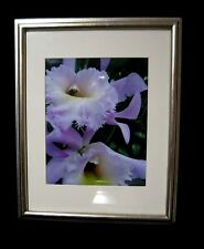 HOME DECOR - FRAMED FLORAL PHOTO OF BOTANICAL PINK AND WHITE ORCHIDS