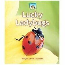 Lucky Ladybugs (Bug Books)