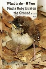 What to Do- If You Find a Baby Bird on the Ground by Lucinda Choules (2014,...
