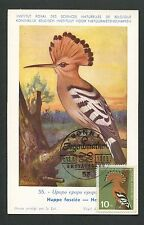 BUND MK 1963 FAUNA VÖGEL WIEDEHOPF MAXIMUMKARTE CARTE MAXIMUM CARD MC CM d7428