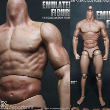"ZC Toys 1:6 Scale Muscular Figure Body fit  For 12"" Hot Toys Head SCULPT NEW! #1"