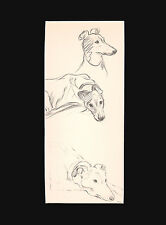 Vintage Greyhound Dog Waiting for Action 1937 Art Print  by Lucy Dawson 9X12