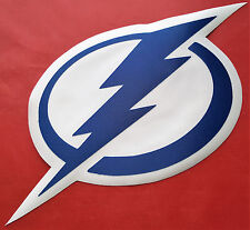 "HUGE TAMPA BAY LIGHTNING IRON-ON PATCH - 8"" x 12"""