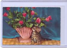 VINTAGE TABBY KITTEN CAT WITH ROSES REPRO REPRODUCTION POSTCARD