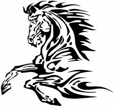 (Nr116) FIRE FLAME HORSE MUSTANG HEAD DECAL VINYL STICKER LAPTOP HOOD WINDOW CAR