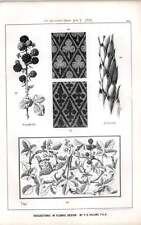 1876 Suggestions In Floral Design Ft Hulme House Leek Blackberry