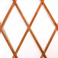RED WOODEN EXPANDING TRELLIS Rose Garden Wall Climber Border Protect Flower Bed